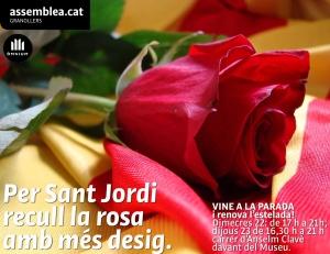 Sant Jordi 2015_br